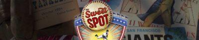 The Sweet Spot - Baseball documentary header