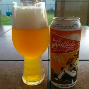 Cosmic Truth, Buffalo Brewer Series, 2016