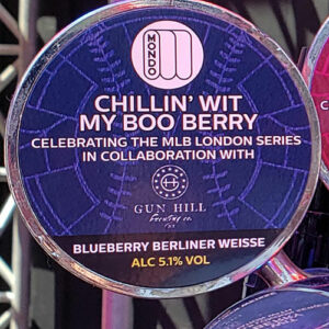 Chillin' Wit My Boo Berry Blueberry Berliner Weisse – Mondo Brewing