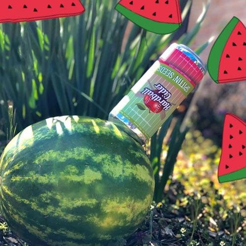 Hardball Cider – Spittin' Seeds (Watermelon)